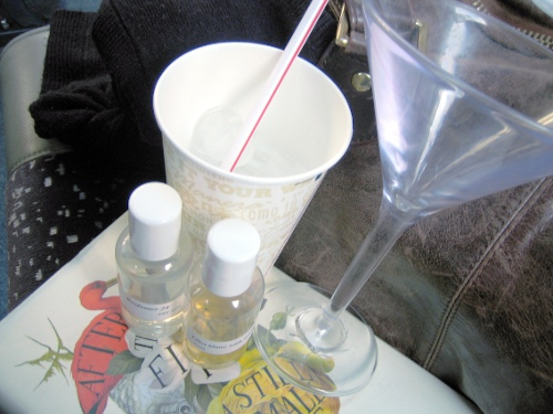 Travel Martini Kit